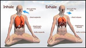 Awareness Breathing  How To Focus On Your Breath