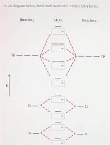 Solved  In The Diagram Below  Label Each Molecular Orbital