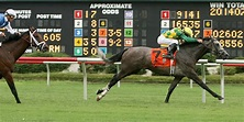 Colonial Downs sold with goal of bringing back horse racing in 2019 - Daily Press