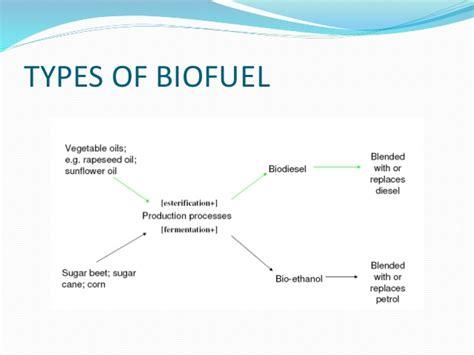 biofuels future is here