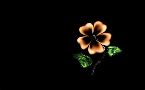 Light Green Flowers by Creative Flower Match Fire Minimalism Black Background Hd