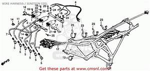 Honda Cbx1000 Supersport 1979  Z  Usa Wire Harness