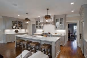 Kitchens with Light Gray Cabinets