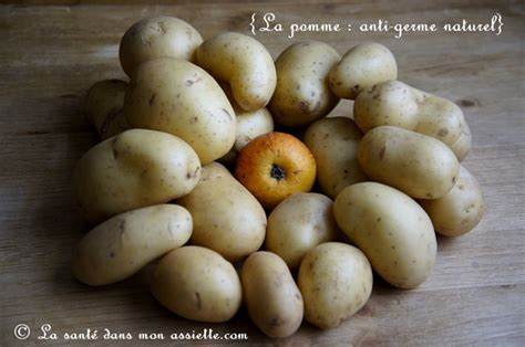 comment arreter la germination des pommes de terre