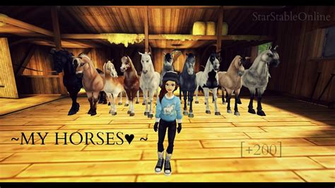 sso horses