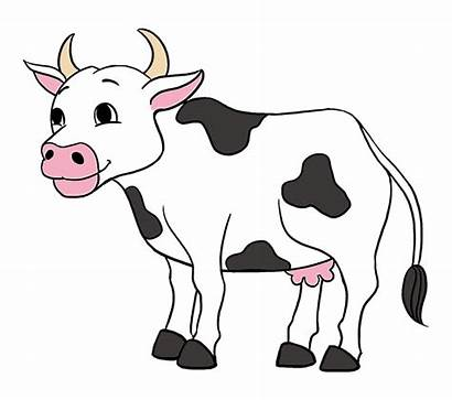 Cow Cartoon Clipart Draw Doctor Drawing Transparent