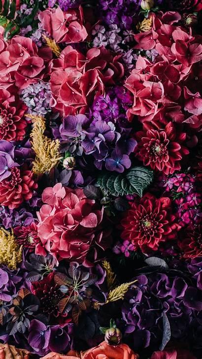 Iphone Floral Wallpapers Dark Flower Flowers Apple