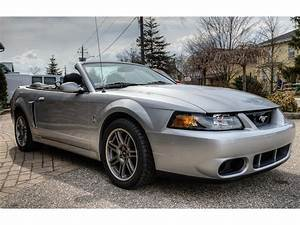 2003 Ford Mustang SVT Cobra for Sale | ClassicCars.com | CC-1100208