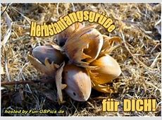 Herbst Whatsapp Bilder Grüsse Facebook BilderGB Bilder