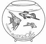 Coloring Aquarium Fish Pet Pets Ocean Fresh Animals sketch template