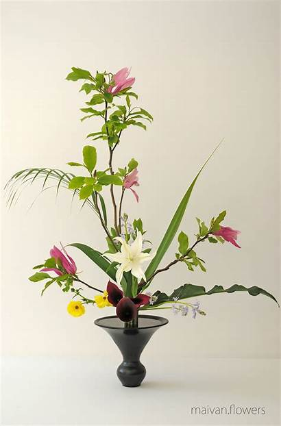 Rikka Flowers Shofutai Maivan