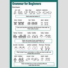 Grammar For Beginners  Plural Experts Worksheet  Free Esl Printable Worksheets Made By Teachers