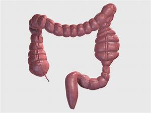 Causes And Risk Factors Of Colon Cancer