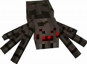 #spider | Nova Skin