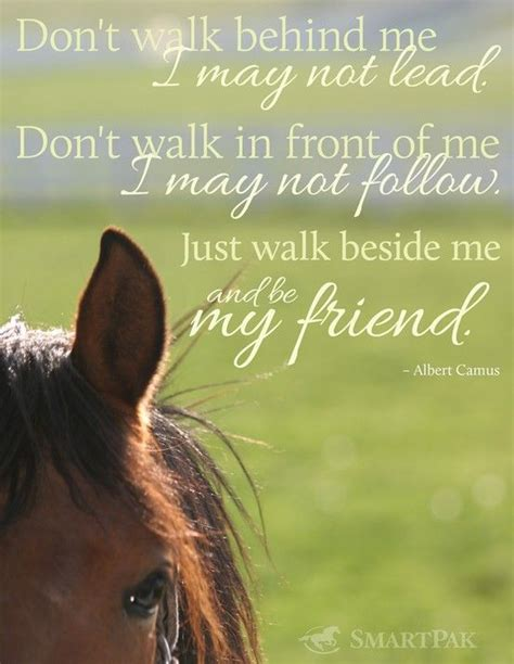 horse quotes thank horses friend friends quotesgram saying say walk