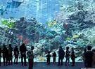好期待!桃園八景島水族館Xpark 8/7開幕 4大亮點搶先看 | ETtoday旅遊雲 | ETtoday新聞雲