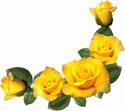 Clip Flower Clipart Rose Corner на Tubes