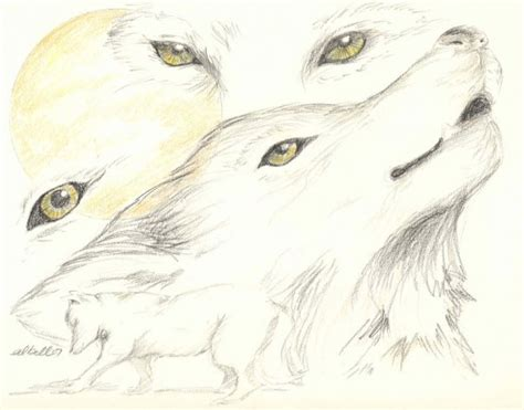 Wolf Eyes Sketches and Drawings