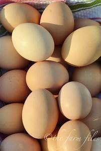 The Farm Files  Farm Fresh Easter Eggs  Natural Egg Dye Recipe