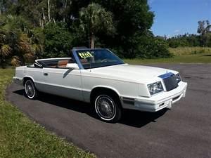 Chrysler Le Baron Cabriolet : 1984 chrysler convertible le baron mark cross edition white saddle interior for sale photos ~ Medecine-chirurgie-esthetiques.com Avis de Voitures