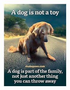 The 25+ best Dog quotes sad ideas on Pinterest | Puppy ...