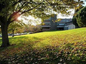 University Of Exeter Courses Costs And Application