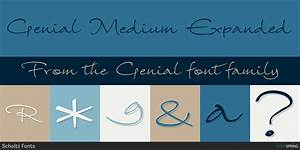 Fontspring | Genial Fonts by Scholtz Fonts