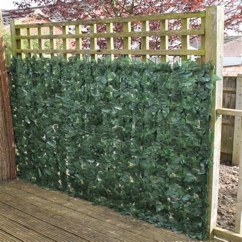 Popular Ivy Privacy Fence — Fence Ideas