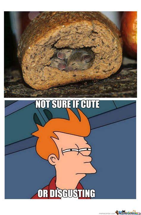 Disgusting Friday Memes - disgusting memes image memes at relatably com