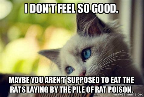 I Feel Good Meme - i don t feel so good maybe you aren t supposed to eat the rats laying by the pile of rat poison