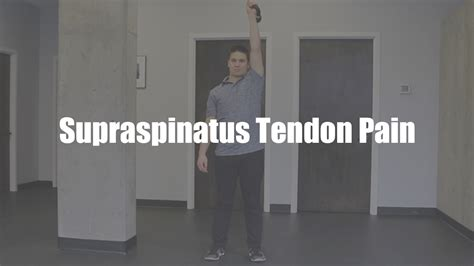 supraspinatus exercises tendon pain