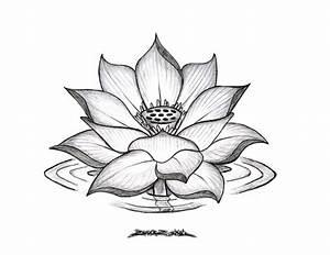 Lotus Flower Drawings for Tattoos | Lotus Flower Drawing ...