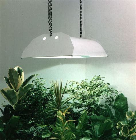 Artificial Light For Plants by How Artificial Plant Lights Will Help Growing Your Plants