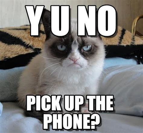 On The Phone Meme - y u no grumpy cat meme on memegen