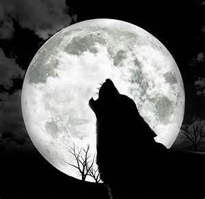 Full Moon Quotes. QuotesGram