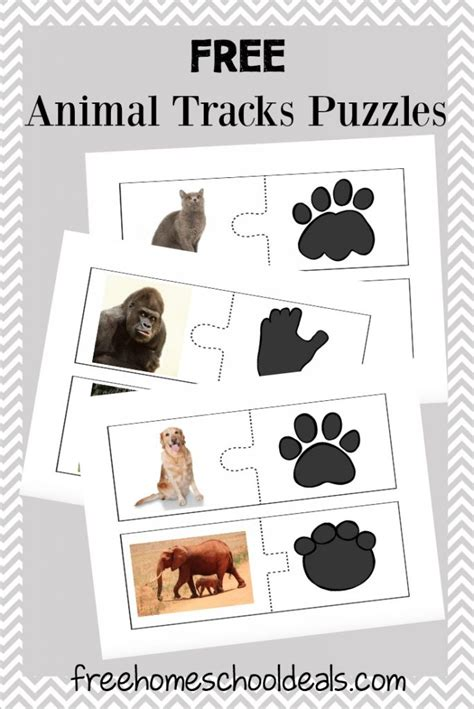 animal tracks puzzles instant