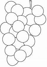 Grapes Coloring Fruits Activity sketch template