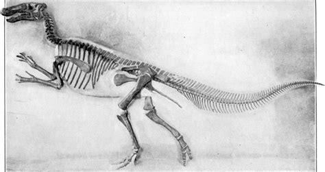 Filemounted  Ee  Edmontosaurus Ee   Jpg Wikimedia Commons