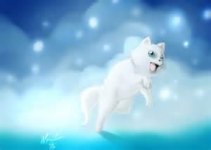 Cute Cat Drawings