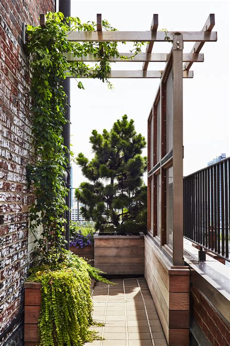 Garden Solutions by Architects Secrets 10 Ideas To Create Privacy In The