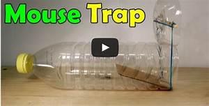 Comment Tuer Une Souris : fabriquer un pi ge souris maison exterminer vos souris ~ Maxctalentgroup.com Avis de Voitures