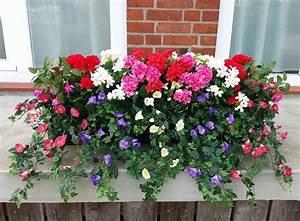 Künstliche Blumen Für Balkonkästen : balkonpflanzen fertig im kasten 4 gr en ~ A.2002-acura-tl-radio.info Haus und Dekorationen
