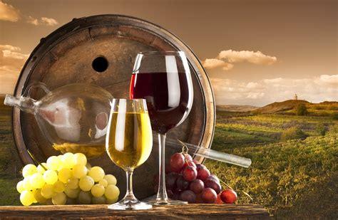 wall mount wine personal sommelier aprenda a degustar e apreciar vinho