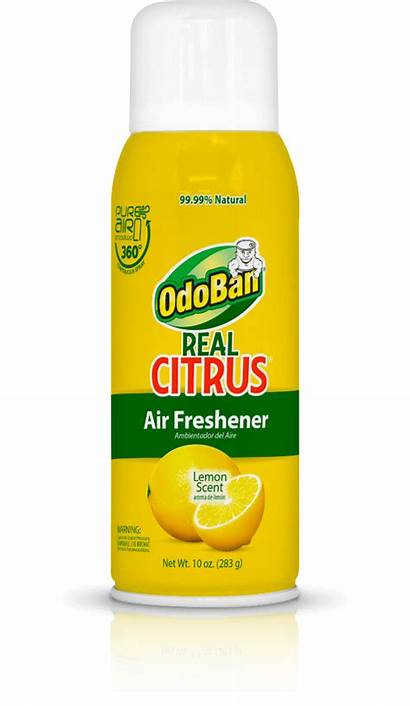 Freshener Air Spray Citrus Odoban Lemon 10a