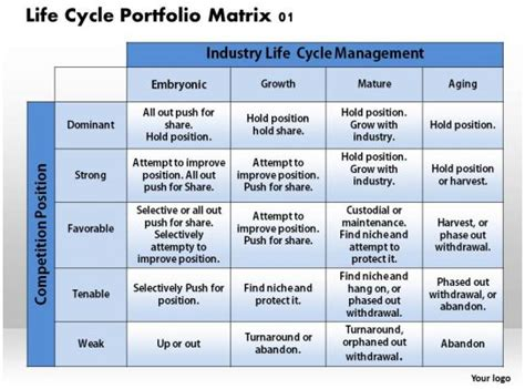 life cycle portfolio matrix  powerpoint