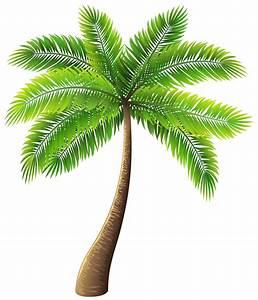 59 Free Palm Tree Clipart - Cliparting.com