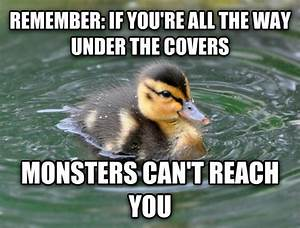 103 best images about Actual Advice Mallard meme on ...