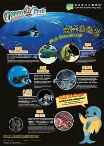 Hong Kong Charts Educational Posters Ocean Park Hong Kong