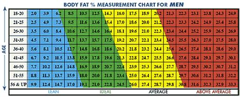 body fat percentage chart clever hippo