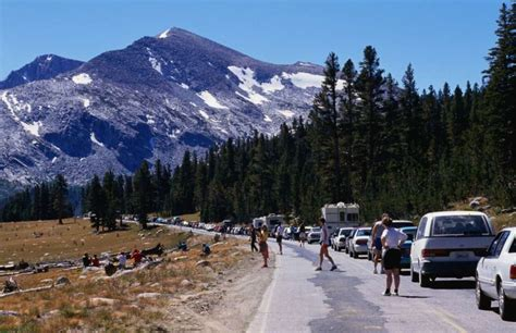 Yosemite Vehicle Fees Could Under Proposed